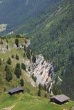 Vie chez le Sommerbergalm dans l'Autrichien Tyrol Image libre de droits