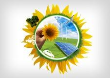 Vie d'Eco Photographie stock