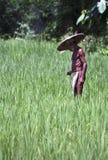 Vie dans un petit village rural Images stock