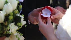 Vie de famille heureuse La jeune mariée tient une boîte rouge avec un bijou d'or Un cadeau de mariage pour la jeune mariée clips vidéos