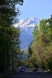 Vie della città di Almaty ad aprile Immagine Stock