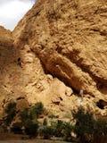Vie della gola di Todgha, Marocco fotografia stock libera da diritti