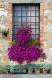 Vie di San Quirico D'Orcia, Toscana. Immagini Stock