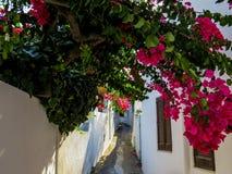Vie di Stromboli fotografia stock