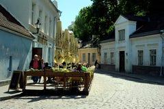 Vie di Tallinn Fotografia Stock