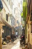 Vie di Varanasi, India Fotografia Stock Libera da Diritti