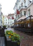 Vie di vecchia città nella pioggia Tallinn, Estonia immagine stock libera da diritti