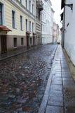 Vie di vecchia città nella pioggia Tallinn, Estonia immagini stock
