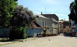 Vie di vecchia città, Tallinn, Estonia Fotografia Stock