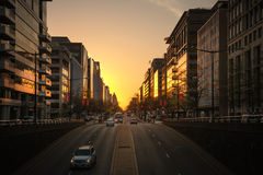 Vie ed architettura del Washington DC Fotografia Stock Libera da Diritti