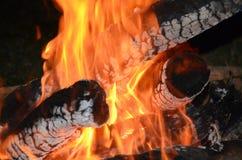 Vie extérieure, le feu de camp, photographie stock libre de droits