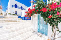 Vie imbiancate su Paros, Grecia Fotografia Stock Libera da Diritti