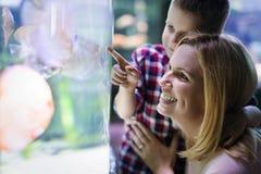 Vie marine de observation de mère et de fils dans l'oceanarium images stock