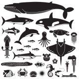 Vie marine et icônes sous-marines d'animaux Photographie stock libre de droits