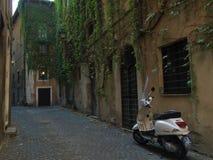 Vie pavimentate di Roma Italia fotografia stock