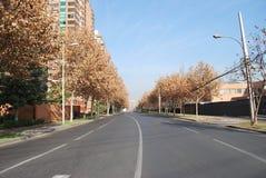Vie a Santiago, Cile fotografia stock