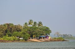 Vie tropicale vue de la rivière Image stock