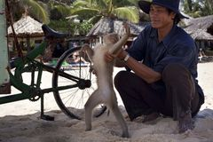 Vieatnamese和一只猴子在海滩 库存图片