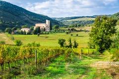 Viñedos y el monasterio en Toscana Fotografía de archivo