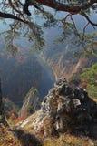 Vief bonito da montanha de Sokolica do rio de Dunajec em Pienin Fotos de Stock Royalty Free