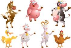 Vieh Lizenzfreie Stockfotos