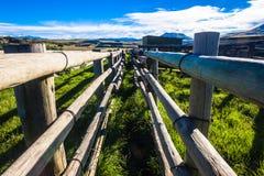Vieh-einbahnige Hürde sperrt Bauernhof ein stockfotografie