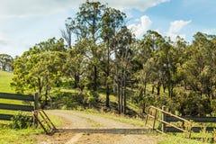Vieh-Gitter, Australien Lizenzfreie Stockfotografie