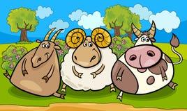 Vieh-Gruppenkarikaturillustration Stockbild