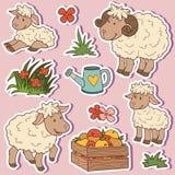 Vieh stellen ein, vector Aufkleber mit Schaffamilie Stockbild