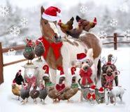 Vieh und Haustiere, die zusammen für Weihnachten angekleidet stehen stockfoto