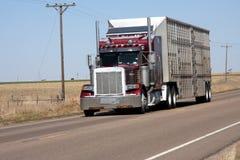 Viehanlieferung Lizenzfreie Stockbilder