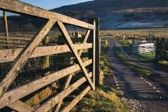 Viehgitter in Cumbria Lizenzfreie Stockfotografie