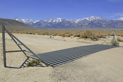 Viehgitter in der Straße auf Ranch im amerikanischen Westen lizenzfreies stockbild