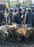 Viehmarkt in Kirgisistan Lizenzfreie Stockfotografie