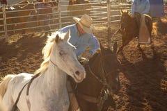 Viehzüchter Lizenzfreie Stockfotografie