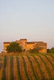 Vieil établissement vinicole, Toscane, Italie photographie stock