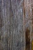 Vieil étage en bois Photographie stock