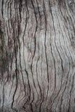 Vieil abstractbackground en bois en Thaïlande Photos libres de droits