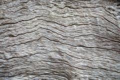 Vieil abstractbackground en bois en Thaïlande Images stock