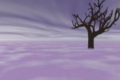 Vieil arbre Photo stock