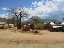 vieil arbre de baobab Photos stock
