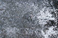 Vieil arbre de marbre Image stock
