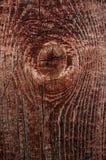 Vieil arbre de texture Images libres de droits