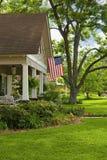 Vieil arbre rayé à la maison Image stock