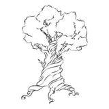 Vieil arbre tiré par la main Symbole sur le fond blanc Vecteur Photos libres de droits