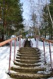 Vieil escalier dans les bois Image libre de droits