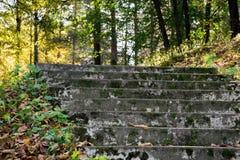 Vieil escalier dans la for t photo stock image 36338530 - Vieil evier en pierre ...