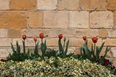 Vieil extérieur en pierre de Cotswold Photographie stock