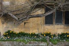 Vieil extérieur en pierre de Cotswold Photos libres de droits