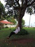 Vieil homme appréciant l'oscillation essayée à l'arbre Photo stock